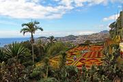 Madeira - Blumeninsel